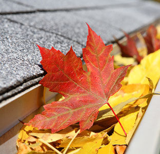 Gutter Cleaning | Higher Ground of Chattanooga